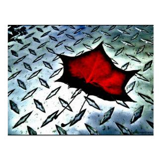 """Red Maple"" JTG Art Postcard"