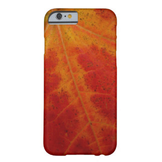 Red Maple Leaf Abstract Autumn Nature Photography Barely There iPhone 6 Case
