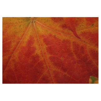Red Maple Leaf Abstract Autumn Nature Photography Wood Poster