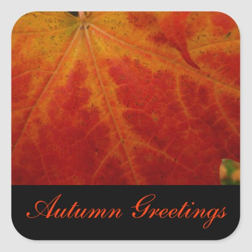 Red Maple Leaf Autumn Greetings Sticker