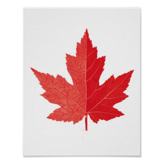 Red Maple leaf Canada Day art print no.11