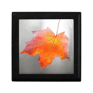 Red Maple Leaf - Mystique Autumn Small Square Gift Box