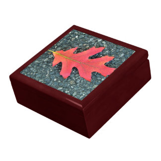 Red Maple leaf on the road Jewelry Boxes
