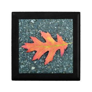 Red Maple leaf on the road Keepsake Box