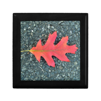 Red Maple leaf on the road Jewelry Box