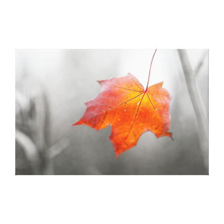 Red Maple Leaf - Velvet Autumn Stretched Canvas Print