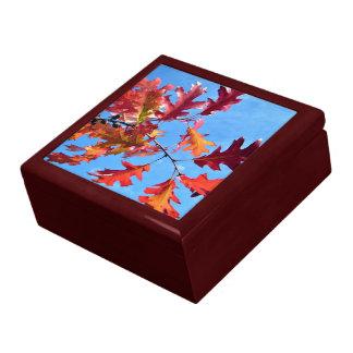 Red maple leaves against blue sky keepsake box