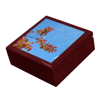 Red maple leaves against blue sky trinket box