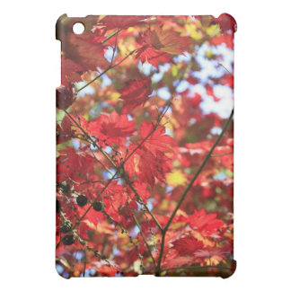 Red Maple Leaves in the Fall iPad Mini Case
