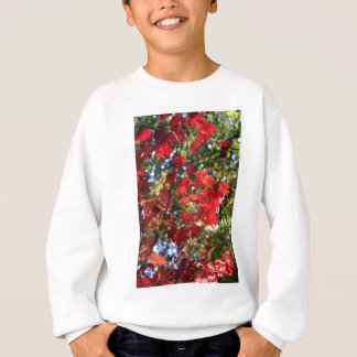 Red Maple Leaves in the Fall Sweatshirt