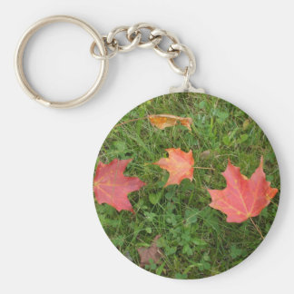 Red Maple Leaves on Grass Basic Round Button Key Ring