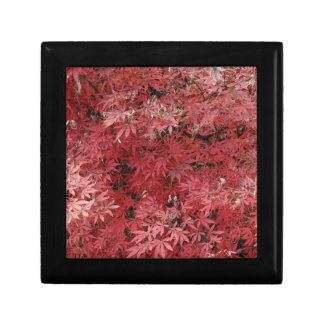 red maple leaves small square gift box