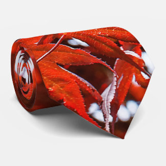 Red Maple Leaves Tie