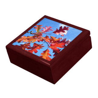 Red maple leaves with various shades of yellow keepsake box
