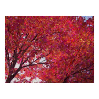 Red Maple Print