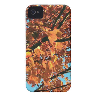 RED MAPLE TREE IN AUTUMN FALL Case-Mate iPhone 4 CASE