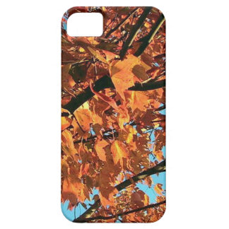 RED MAPLE TREE IN AUTUMN FALL iPhone 5 CASES