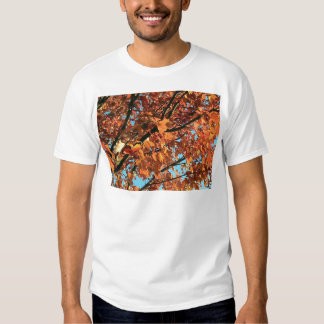 RED MAPLE TREE IN AUTUMN FALL TEE SHIRTS