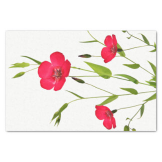 red meadow flowers tissue paper