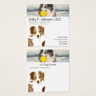 Red Merle Australian Shepherd, Black Melon Floral Square Business Card