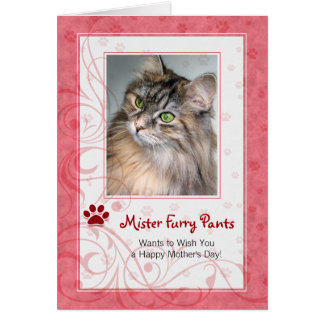 Red Mother's Day Photo Greeting from the Cat Greeting Card