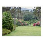 Red Muckross House Gardens, Ireland flowers Postcards