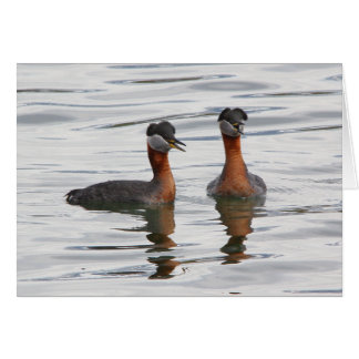 Red-necked Grebe III Greeting Card