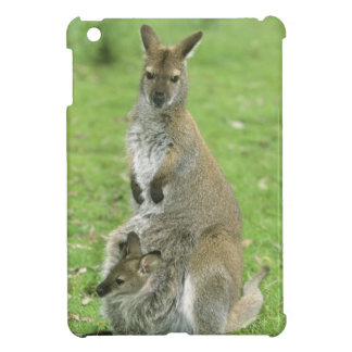 Red-necked Wallaby, Macropus rufogriseus), Cover For The iPad Mini