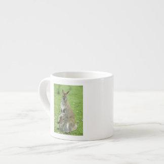 Red-necked Wallaby, Macropus rufogriseus), Espresso Cup