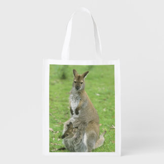 Red-necked Wallaby, Macropus rufogriseus), Reusable Grocery Bag
