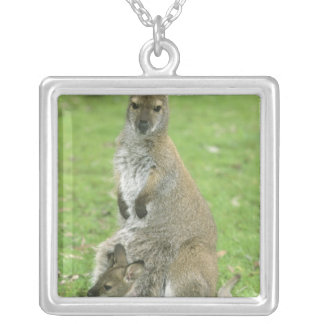Red-necked Wallaby, Macropus rufogriseus), Silver Plated Necklace