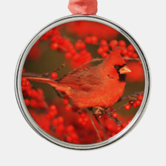 Red Northern Cardinal Male, IL Silver-Colored Round Decoration