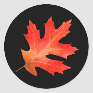 Red Oak Leaf Sticker