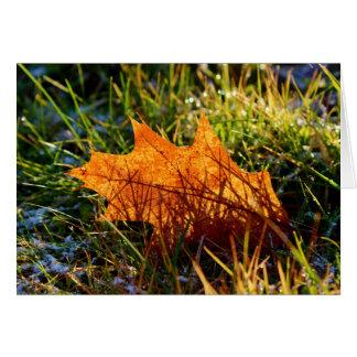 Red Oak Tree Leaf Card