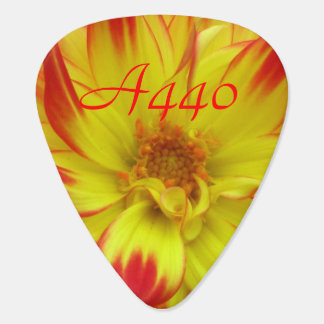 Red on Yellow Dalia Flower A440 Guitar Pick