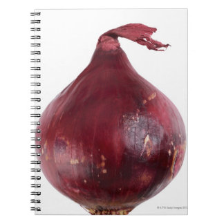 Red onion  isolated on white background, DFF Notebooks