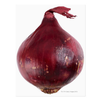 Red onion  isolated on white background, DFF Postcard