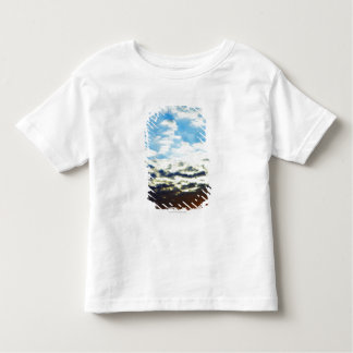 Red Orange Blue Sunset with Clouds Toddler T-Shirt