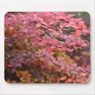 Red Orange Fall Foliage Autumn Leaves Nature Photo Mouse Mat