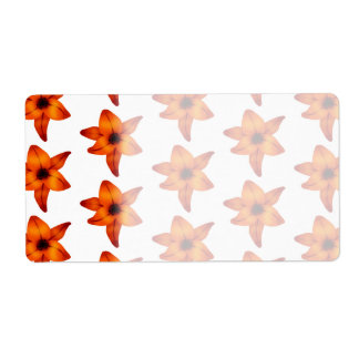 Red - Orange Lily Flowers on White Background.