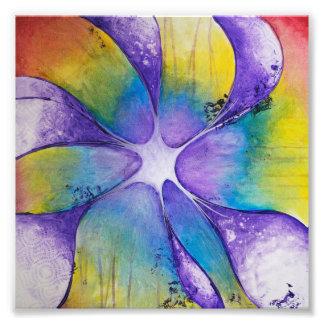 Red, Orange, Yellow, Green, Blue, Purple Photographic Print
