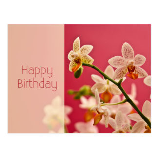 Red Orchid • Birthday Postcard