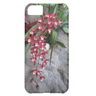 Red Orchid iPhone Case Case For iPhone 5C