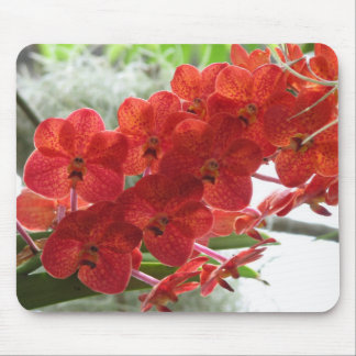 RED ORCHID MOUSE MAT