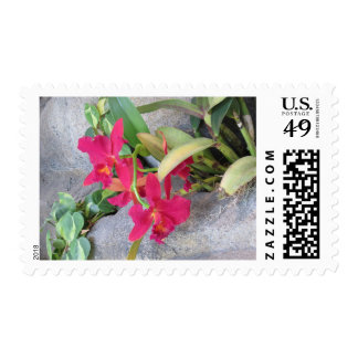 Red Orchid Postage Stamps