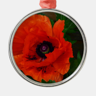 Red Oriental Poppy Christmas Ornament