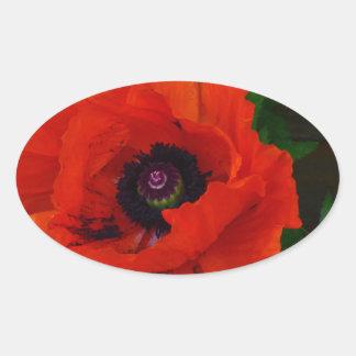 Red Oriental Poppy Oval Sticker