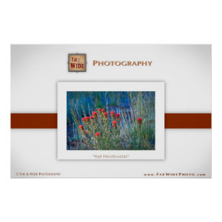 """""""Red Paintbrushes"""" poster"""