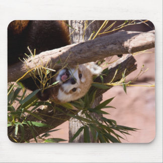 Red Panda2 Mouse Pad