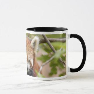 red-panda-023 mug